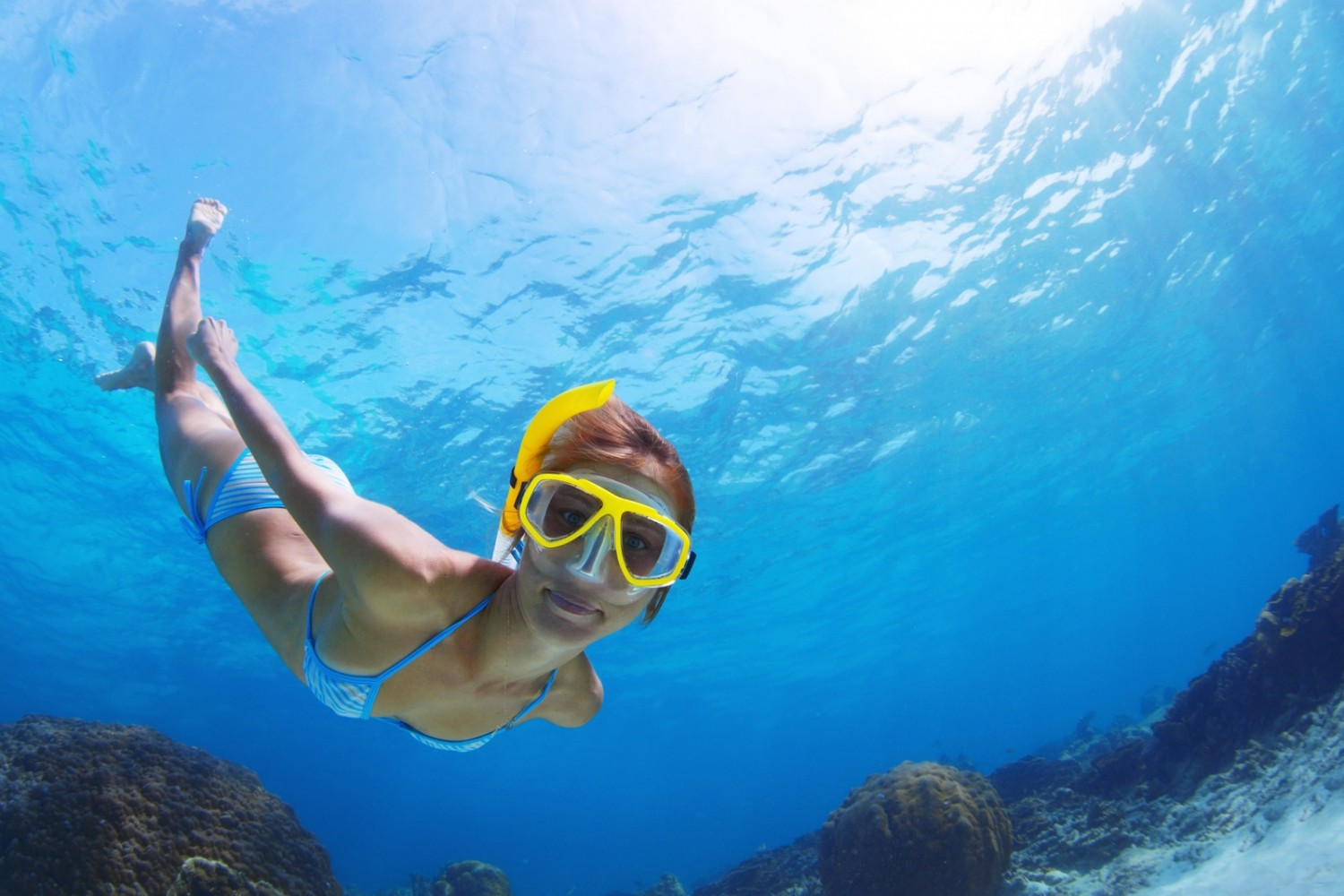 Go Snorkeling on a Private Motorboat